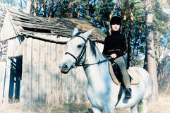 Horse and rider Stock Images