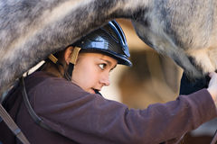 Horse and rider. Teen prepares horse for riding lessons Royalty Free Stock Images