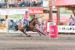 Horse and rider approach barrel at high speed at barrel race. Williams Lake, British Columbia/Canada - July 1, 2016:  horse and rider approach next barrel during Stock Images