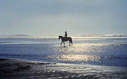 Horse and Rider on Beach. Silhouette of person riding horse on Northern California beach Stock Photos