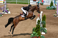 Horse Rider at the Bromont jumping competition Stock Photography