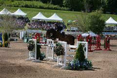 Horse Rider at the Bromont jumping competition Stock Images