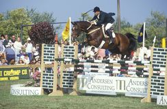 Horse and rider clearing hurdle in American Caf� Grand Prix, Howard Community College, Columbia, Maryland Stock Photo
