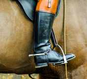 Horse Rider Royalty Free Stock Photography