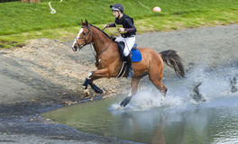 Horse rider competing in Cross Country Event. Horse rider competing in Cross Country and Showjumping Trials event at Kirkley Hall, Northumberland, England, UK royalty free stock photography