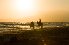 Horse rider couple at sunset beach, next to the sea Stock Photography