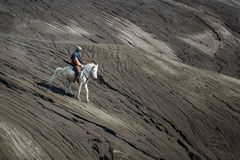 Horse rider at the desert. A Man riding horse at bromo desert royalty free stock photos