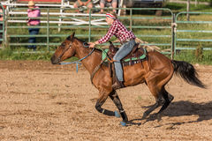 Horse and Rider  down the strech Royalty Free Stock Photos