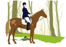 Horse rider in forest. Horse rider and brown horse in green forest Royalty Free Stock Photos