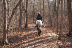 Horse on Rider Heading Home stock image