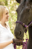Horse rider and horse Royalty Free Stock Images