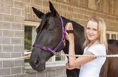 Horse rider and horse Royalty Free Stock Image