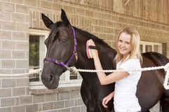 Horse rider and horse Stock Images