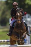 Horse Rider Jump Royalty Free Stock Photos
