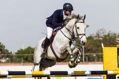 Horse Rider Poles Jump Flight Royalty Free Stock Photo