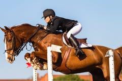 Horse Rider Jump Woman Focus Stock Photos