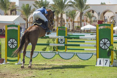 Horse and rider jumping in equestrian competition Stock Photography