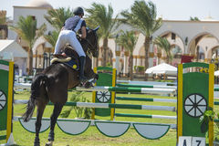 Horse and rider jumping in equestrian competition Royalty Free Stock Photography
