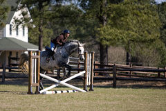 Horse and rider jumping hurdles. In the countryside Royalty Free Stock Photography