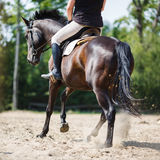 Horse rider jumping Stock Photos