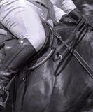 Horse rider Leather saddle hanging horses sport royalty free stock images