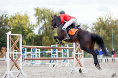 Horse rider man on show jumping competition. Horse rider man taking his course on show jumping competition stock photos