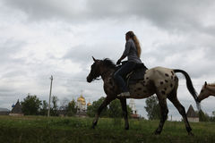 Horse rider in Mozhaysk near Moscow, Russia. Royalty Free Stock Images