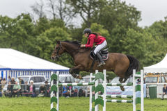 Horse with rider in red jacket jumping a green and white fence. Royalty Free Stock Photos