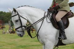 Horse and Rider. A Horse and Rider at a Show Jumping Event Stock Photos