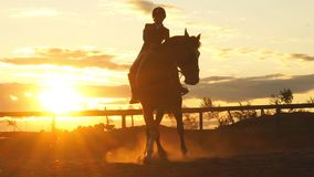 Silhouette of a woman riding a horse at sunset stock footage