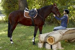 Horse and rider taking a break in the woods. Horse and pretty female rider taking a break in the woods royalty free stock photos
