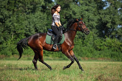 Horse rider on a trail. Woman rider on back of her horse in trail royalty free stock photography