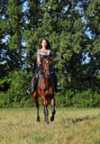 Horse rider on a trail Stock Image