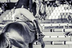 Horse and rider in uniform performing jump at show jumping competition. Equestrian sport background. Black and white art photography monochrome with high Stock Image
