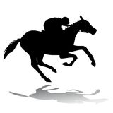 Horse rider, vector illustration Stock Image