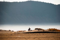 Horse rider at volcanic plateau of miunt Bromo, Indonesia Royalty Free Stock Images