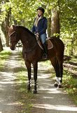 Horse and rider in the woods Royalty Free Stock Photography