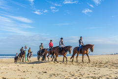 Horse riders on the beach on beautiful sunny day. Kijkduin beach The Hague, the Netherlands - 1 October 2016: horse riders on the beach Stock Photos