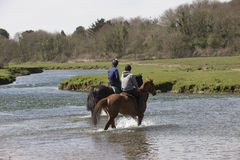 Horse riders crossing a river. Horse riders on the Ogmore River in South Wales UK Stock Photography