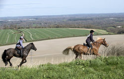 Horse riders in English countryside UK. Riders taking part in the Kingsclere Fun Ride at Whitehill in the high northern Hampshire countryside England UK Stock Photography