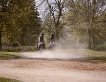 Horse riders in park Royalty Free Stock Photo