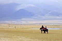 Horse riders at the prairies of Qinghai, China Royalty Free Stock Image