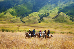 Horse Riders in Savana. Horse Riders in Bromo Savana Royalty Free Stock Image
