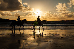 Horse riders at sunset. Horse riders at sunse Trearddur Bay Beach Isle of Anglesey North Wales UK Royalty Free Stock Image