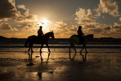 Horse riders at sunset Royalty Free Stock Photo