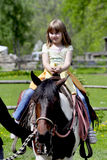 Horse riding. Little girl riding a horse Royalty Free Stock Images