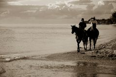 Horse riding. On the beach in Mauritius Royalty Free Stock Image