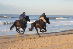 Horse riding Royalty Free Stock Photography