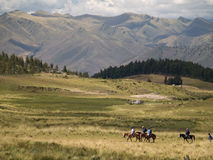Horse Riding Royalty Free Stock Images