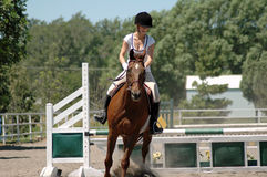 Horse riding. Woman riding bay horse over jumping course Stock Photos